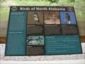 Image for Birds of North Alabama
