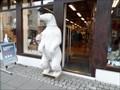 Image for Polar Bears  -  Reykjavik, Iceland