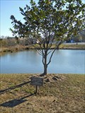 Image for Donavan W. Hough - Fredericksburg, VA