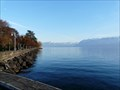 Image for Lake Geneva - Lausanne, Switzerland