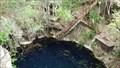 Image for Cenote Yaluzil (Yaaludzil)