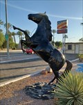 Image for Black Stallion - Mesa, AZ