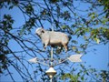 Image for Cow Weathervane - Ephrata, PA
