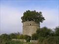 Image for le Chene du Pigonnier de Pouzay - Beceloeuf,FR