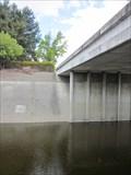Image for San Tomas Aquino Creek Gauge - Santa Clara, CA