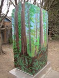 Image for Redwood Forest - Soquel, CA