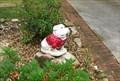 Image for Georgia Bulldog - Carrollton, GA