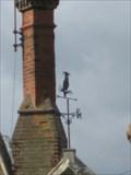 Image for Wise Owl - Edlesborough School, High Street, Edlesborough, Buckinghamshire, UK