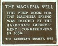 Image for The Magnesia Well, Valley Gardens, Harrogate, N Yorks