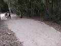 Image for Mayan road