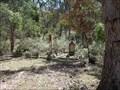 Image for Joadja Cemetery - Joadja, NSW