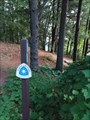 Image for North Country Trail - Gun Lake Road Access Point
