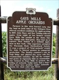 Image for Gays Mills Apple Orchards Historical Marker