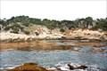 Image for Point Lobos - California, USA