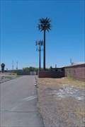 Image for Talking Tree - Van Buren & 40th - Phoenix, AZ