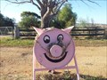 Image for To Miss Pink Pig - Greenthorpe, NSW