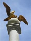 Image for The Seagulls - Salt Lake City, Utah