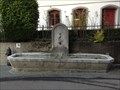 "Image for Olten fountains #06 Villagefountain or ""FishFountain"" (Gryffenplatz, 1843)"