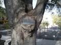 Image for Casa de Reflection - Cupertino, CA