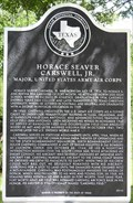 Image for Horace Seaver Carswell, Jr.