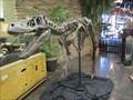Image for Nanotyrannus Dinosaur - Lehi Utah