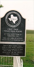 Image for First - Tree in the Texas High Plains - Carson County, TX