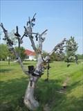 Image for Pelee Island Shoe Tree's