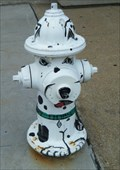 Image for Dalmation Hydrant - Erie, PA