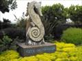 Image for Seahorses - Seaside, California