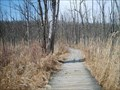 Image for Trail  Broadwalk at Pokagon State Park