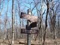 Image for Appalachian Trail - Tuscarora Trail - Darlington Trail Intersection - Blue Mountain, Marysville PA