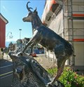 Image for Chamois - Gams, Switzerland