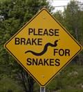 Image for Please Brake for Snakes