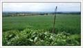 Image for TB 2402-61 Za lesem, CZ