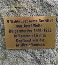 Image for Gestiftete Walnussbäume in Vanikum-Rommerskirchen, NRW [GER]