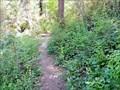 Image for Webster Road Trail - Fruitvale, BC