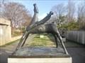Image for Horse and Rider - Washington, DC