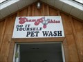 Image for ShamPoochies Pet Wash - Smiths Falls, Ontario
