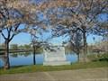 Image for Cherry Trees on Belle Isle - Detroit, MI