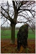 Image for Menhir kamenná baba /// Stone Beldame, Slavetin, CZ