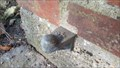Image for K -61-09193 - Højdefikspunkt
