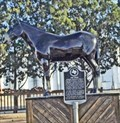 Image for World's Largest Muleshoe, Mule Tributes  - Muleshoe, TX