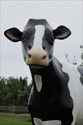 Image for Large Cow - Charlettetown, Prince Edward Island