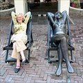 Image for Sunbathing Beauty sits by me, Middelburg, the Netherlands.