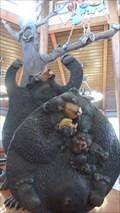 Image for Bears - Guilderland, NY