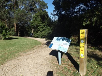 The location of the Fauna Sign on the East Gippsland Rail Trail section next to the Snowy River, on the western side of Forest Park, Orbost, Victoria. 14 May, 2016