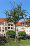 Image for Ida - Leipzig, Saxony, Germany
