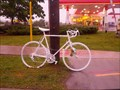 Image for 59-year-old cyclist - Ghost Bike - Kingston, Ontario