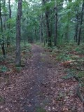 Image for Connor Bayou Hiking/Walking Trails - Grand Haven, Michigan