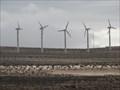 Image for Inaugurado en Canarias el segundo parque eólico más grande de España - Costa Calma - TdC - Spain